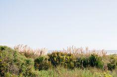 Dara & Gene { Wild Dunes Wedding } - RIVERLAND STUDIOS #WildDunesWeddings