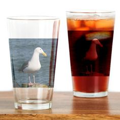 #Seagull looking at you Drinking Glass #sold on #cafepress