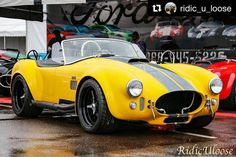 #Repost @ridic_u_loose 🍌🏁 Banana of doom   ____________________________    #ford #classic #classiccars #fordsofinstagram #cobra #accobra #superformance #hillbankmotorsports #v8 #hotrod #beautiful #gorgeous #barrettjackson #california #scottsdale #2017 #cars #ride #drive #driven #clean  #fordperformance  #instacars #instagram #ridiculoose #photography #canon #racecar