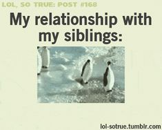 Ok so this is not how my sister and I act with each other, but the penguins are hilarious!!