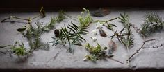Christmas in Wales: The Festive Wreath and Table Centre Workshop #landscaping