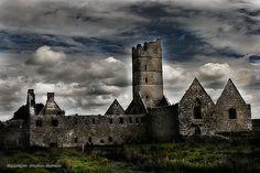 Moyne Abbey, County Mayo, Republic of Ireland     http://mooseman.de/index.htm