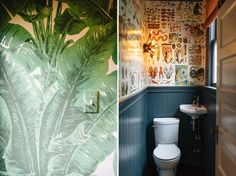So stoked with the newly papered guest bath! We used the Taschen book Albertas Seba Cabinet of Curiosities.