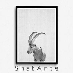 Ibex Print Goat Head Ibex Head Wall Mount Decor Safari by ShakArts