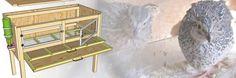 Construction de cages d'élevage des cailles - plan | Poulailler bio