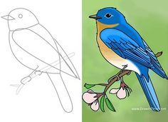 How to Draw a Bird Easy Drawings Sketches, Art Drawings For Kids, Bird Drawings, Animal Drawings, Bird Drawing For Kids, Branch Drawing, Bird Sketch, Bird Embroidery, Cute Birds