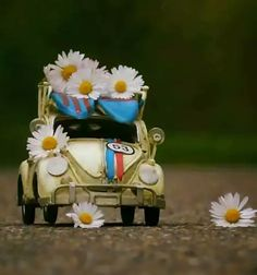 The Love Bug! Miniature Photography, Cute Photography, Volkswagen, Cute Pictures, Beautiful Pictures, Daisy Love, Miniature Cars, Mini Things, Cute Cars