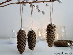 Bildergebnis für vanocni ozdoby z prirodnich materialu Christmas Crafts, Christmas Decorations, Pine Cones, Advent, Diy And Crafts, Presents, Place Card Holders, Drop Earrings, Traditional