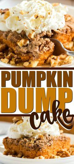 pumpkin dump cake Pumpkin Spiced Latte Recipe, Pumpkin Pie Mix, Pumpkin Pie Recipes, Baked Pumpkin, Pumkin Pie Cake, Carrot Cake, Pumpkin Crisp, Pumpkin Dishes, Oreo Dessert