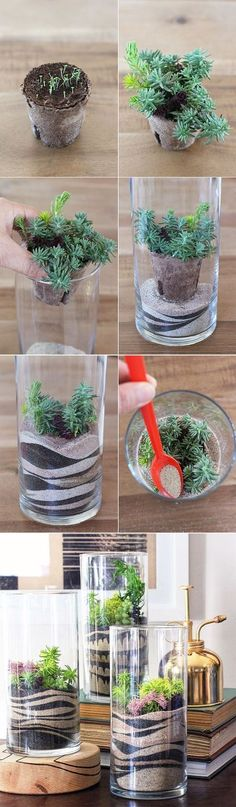 DIY Sand Art Terrarium Photo via Makers Kit DIY Miniature Succulent Bird Cage Planter Tutorial via Succulents & Sunshine of