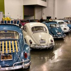 Volks Regime lined up and primed for Wekfest. #volksregime #wekfestsanjose #ohana by topramen04