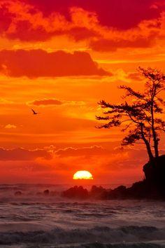 // Les Paysages Asiatiques / Sunset at JinHa Beach, Ulsan, South Korea (by He Wuong Hua) Amazing Sunsets, Amazing Nature, Pretty Pictures, Cool Photos, Beautiful World, Beautiful Places, Foto Nature, Beautiful Sunrise, Sunset Photography