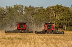 Harvest Time in the Peace Country, Alberta  - Famous Amos Photography