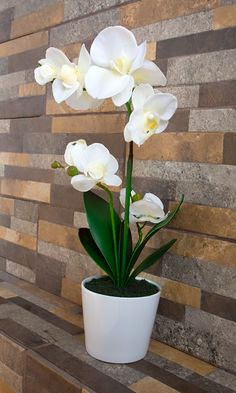 Can you guess its artificial ? Orchid Flower Arrangements, Orchid Centerpieces, Phalaenopsis Orchid, Orchid Plants, Peonies For Sale, Orquideas Cymbidium, Growing Peonies, Artificial Orchids, Decoration Plante