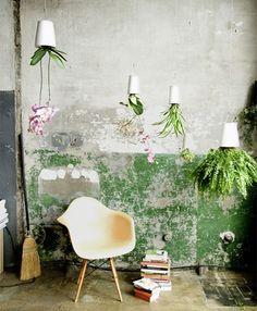 Boskke-sky-planter1