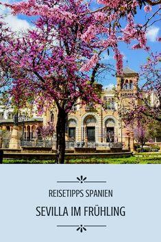Die besten Reisetipps für Sevilla. Reise Spanien. Frühling City Trip.