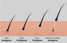 A grande maioria das pessoas não sabem se os cílios se renovavam, nem mesmo sabem os motivos deles caírem. Em média, caemnaturalmente de 3 a 4 cílios naturais por dia e por issoasclientes precisam de manutenções para deixar os cílios lindos e cheios. Entenda… O crescimento do cabelo é composto de diversas fases – Anágena, … Natural, Letters, Grande, Eyelash Growth, Hair Growing, Artificial Eyelashes, Long Eyelashes, Eyelash Extensions, People