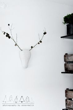 Think of the antler possibilities.