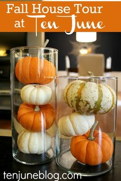 Ten June: Pumpkins + Gourds + Fall Leaves Galore