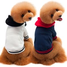 Factory wholesale Teddy pet clothes 100%cotton pet sports sweater T-shirt Multicolor dog hoodies