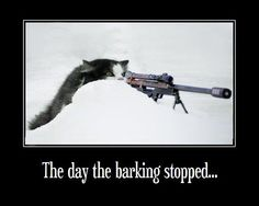 The day the barking stopped