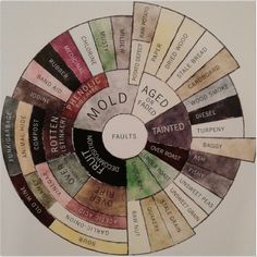 Coffee Defect Flavor Tasters Wheel