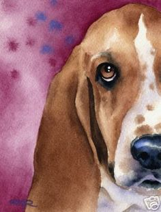 Bassett Hound watercolor. I would love to learn how to do this using a picture of Shelby as inspiration!