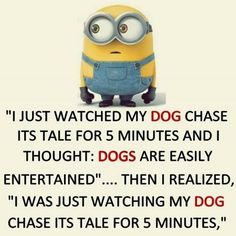 Best Funny Minions captions (11:38:07 PM, Wednesday 29, July 2015 PDT) – 10 pics