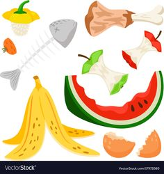 Organic waste, food compost collection isolated on white background. Banana and watermelon rind, fish bone and apple stump vector illustration Compost Bucket, Compost Tumbler, Compost Maker, Garden Compost, Compost Barrel, Compost Soil, September Wallpaper, Kitchen Compost Bin, Bokashi