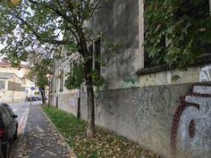 Misure fonometriche per nuova sede protezione civile Bergamo