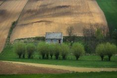 """13 Amazing Photos of """"Wavy"""" Farms That Will  Confuse and Surprise You   BESTTHINGS.CO  — Share & Inspire"""