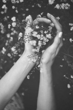 flowers - vintage photography