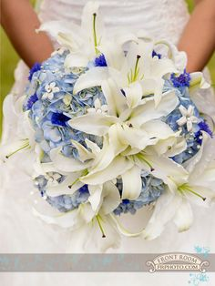 Maggie's bridal bouquet of white lilies and blue Hydrangeas. Flowers by: Barb's Greenhouse. Photo by: FRP