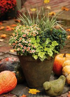 Perfect Match Shade Container Recipe