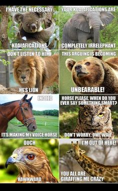 I love how its not just a medley of animal humor, they all interconnect