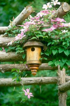 Birdhouse with Pink Clematis, ('Pink Fantasy' ?) on Garden Arbor