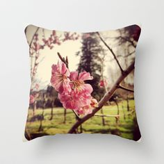 Cherry Blossoms Throw Pillow by Post Haste Art - $20.00