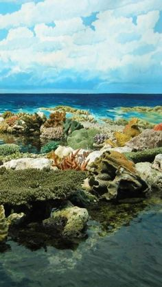 Great Barrier Reef, Attractions, Coral Reefs, Tropical, Islands, Queensland, Australia, Europe, Geography,