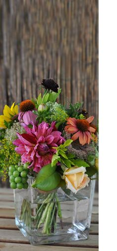 My Luscious Backyard is a Toronto based organic flower business with over 50 varieties of flowers and foliage, including many edible flowers. Growing Flowers, Cut Flowers, Flower Subscription, Flower Bouquets, Edible Flowers, Southeast Asia, South America, Centerpieces, Africa