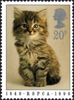 Royal Mail Special Stamps | Royal Society of Prevention of Cruelty to Animals. RSPCA 1840 RSPCA 1990. Kitten