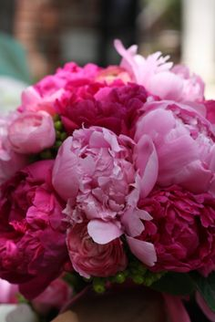 hot pink peonies - I used to cut them off of the bushes in my grandma's backyard as a kid and bring them home!
