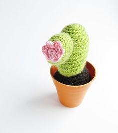 {Crochet Cacti Pattern} gift for my sister, who can never seem to keep her succulents alive.