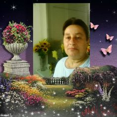Good evening Create