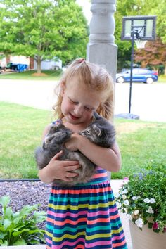 How We Give Our Pets Our Very Best – All The Time