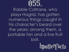 Harry Potter Facts #055:    Robbie Coltrane, who plays Hagrid, has gotten numerous things caught in his character's beard over the years; among them, a portable fan and a live fruit bat.