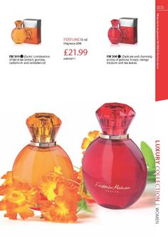 FM 309 Exotic combination of black tea extract, jasmine, cardamom and sandalwood. This is in the same fragrance family as  Calvin Klein – Eternity. While FM 308 Delicate and charming aroma of jasmine, honey, orange blossom and tea leaves. This is in the same fragrance family as  Calvin Klein – Escape Both only £21.99!!!