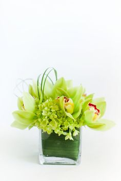 """A monochromatic modern design of green hydrangea, green cymbidium orchids and loops of bear grass in a 4"""" glass cube vase lined with green aspidistra leaves. From Petal's Edge Floral Design via @BloompopHQ"""