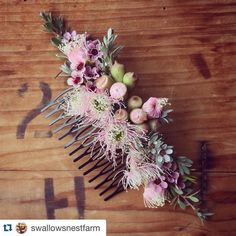 Such a beautiful hair clip made by @swallowsnestfarm #native #nativeflowers #australian #australiannative #australiannativeflowers #gumnuts #waxflowers #hairclip #floral #perfect #perfection #florist by wildflower__lane