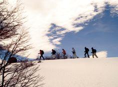 Saboreando el invierno. Sí, sí, todavía es verano, hace calor... pero ¿no es lindo imaginarse haciendo trekking con raquetas en Bariloche?  Para soñar con ir a Bariloche no hay límite de estación.