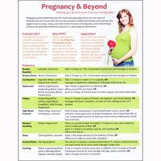 Pregnancy Guide Sheet Tear Pad (50 Sheets)